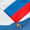 Пикеты против вступления России в ВТО