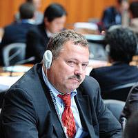 Мнение сторонников ВТО. Потери за последний год переходного периода — 240 млрд руб.