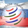 Модернизация, ЖКХ, инновации – российский путь в ВТО