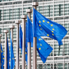 Евросоюз обвиняет Россию в недобросовестном исполнении обязательств ВТО